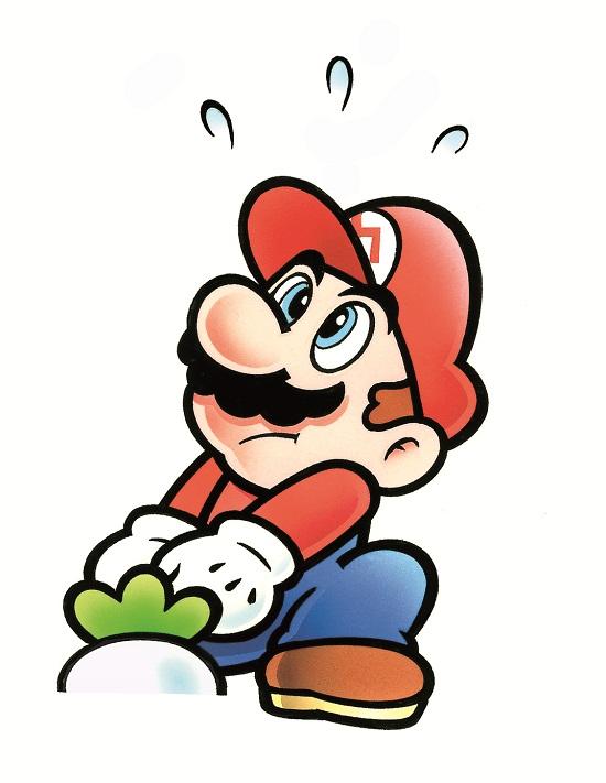 1989 Super Mario Bros 2